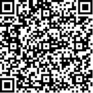 极品飞车17最高通缉 v1.0.28